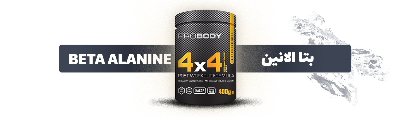 BETA ALANINE  4*4 probody